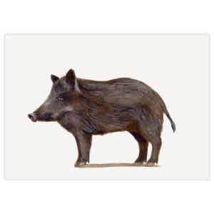 Stokwolf Postkarte Wildschwein STK-BO-04