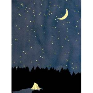 Waldgraefin Postkarte Sternenhimmel 19004