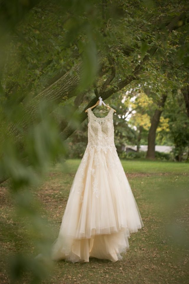 Flowing wedding gown with lots of tule hangs from the branches of a large tree