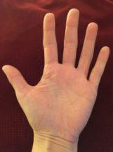 palmhand