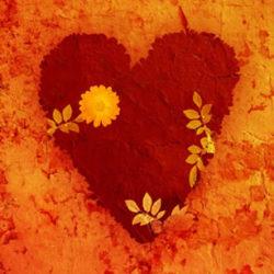 Gebrochenes Herz heilen
