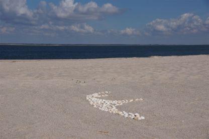 Strand am Sylter Ellenbogen