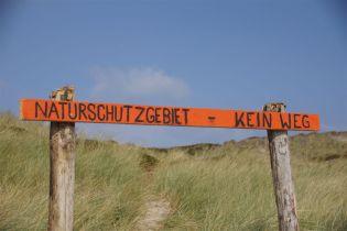 Dünenschutz auf Sylt