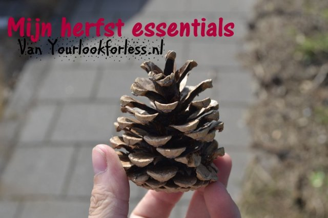 Herfst essentials yourlookforless