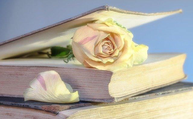 Bloggen | Van uitlaatklep naar passie
