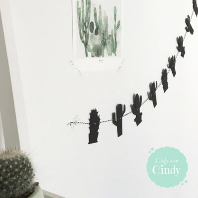 slinger cactus