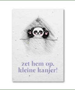 Groeikaart zet hem op kanjer, kaart met zaadjes, kleine kanga, kleine lucas, liefsvanlauren.nl