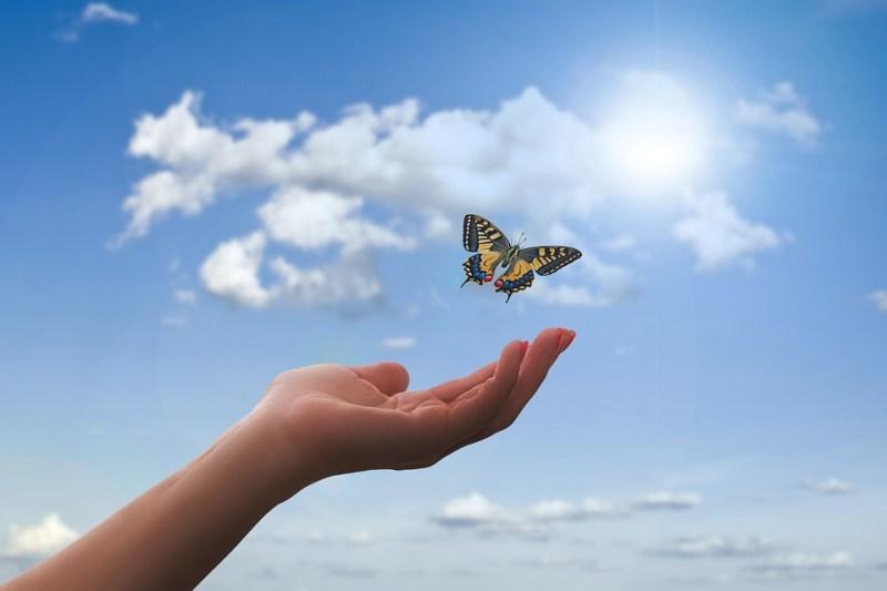 Symboliek van een Vlinder, Rouw, spirituele vlinder, liefsvanlauren.nl