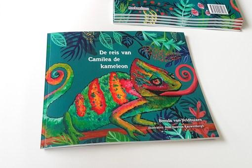 Camelia de Kameleon, Brenda van Veldhuizen, op reis, rouw, verlies, liefsvanlauren.nl