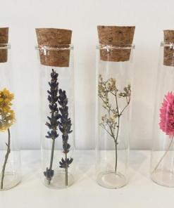 Droogbloem, droogbloemen voor jou, droogbloem in glazen buisje, liefsvanlauren.nl