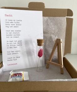 brievenbus pakket zacht, liefs per post, post cadeautje, moederschap, liefsvanlauren.nl
