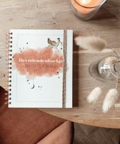 Sterrenliefs, invulboekje, vriendenboekje, herinneringen vastleggen, sterrenkindje, liefsvanlauren.nl