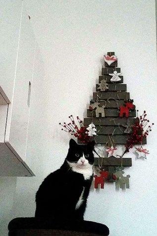 Kater Doezel op zijn toren voor de kerstboom