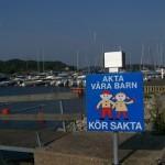 synchroonkijken,Zweden,snelheid,2015, verkeersbord 'spelende kinderen'