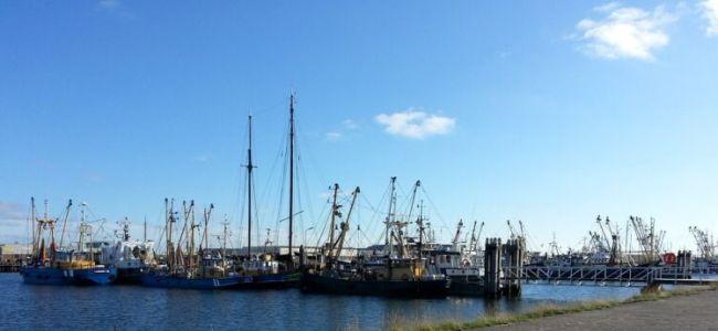 Lauwersoog,vissersschepen,zomer,2015