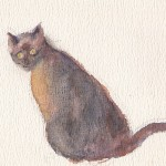 schilderij,An van Berkel-Zorn,An Zorn,aquarel,Poohtje,Burmees,poes,Den Haag