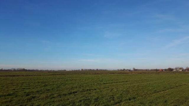 fietsen,Friesland,zon,Opsterlandse Compagnonsvaart,riet,januari 2016
