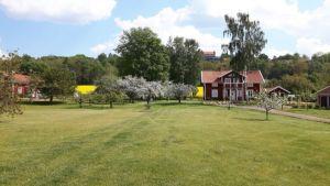 Zweden,mei,2016,bloeiende weilanden,fluitekruid,seringen,koolzaad,appelbomen