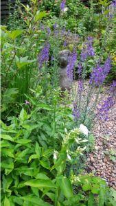 Friesland,tuin,linaria en witte flox