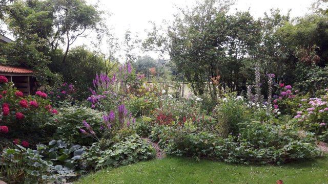 tuin 2 augustus