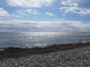 Covid19 - op Møn en eindelijk weer de zee!