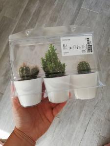 mini cactus set - Ikea shoplog mei 2019