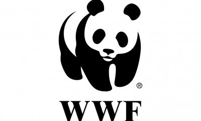 WWF-590x240