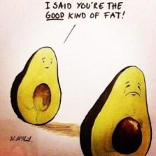 avocado goede vetten