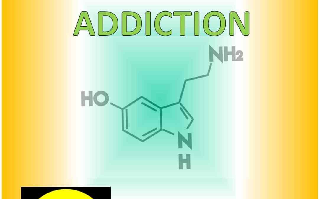4. HOW ADDICTION WORKS (part IV of V)