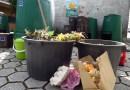 Interesse pela compostagem: 37% dos inquiridos mostraram-se interessados