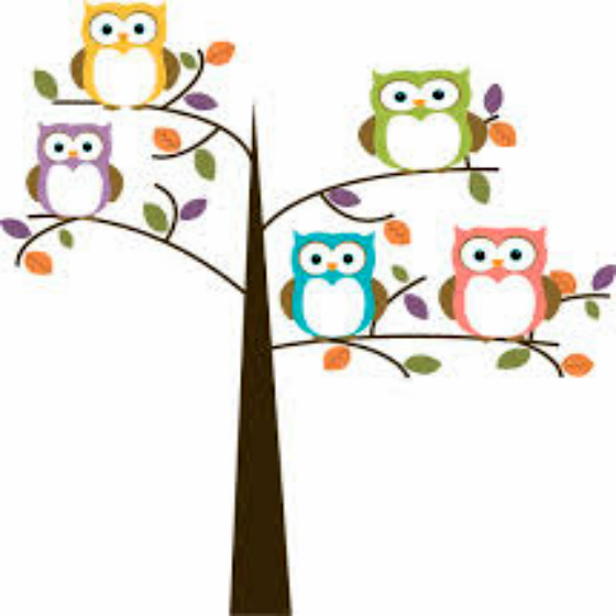 Dream Decoding The Dream Of The 5 Owls Lifeplan Coaching