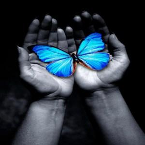 butterfly in hand-blue