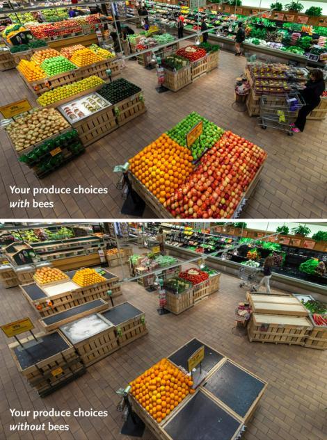 grocery store - bee dies