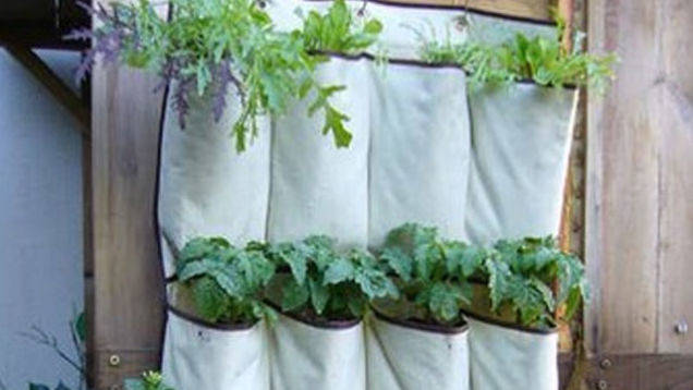 Create a Space-Saving Garden