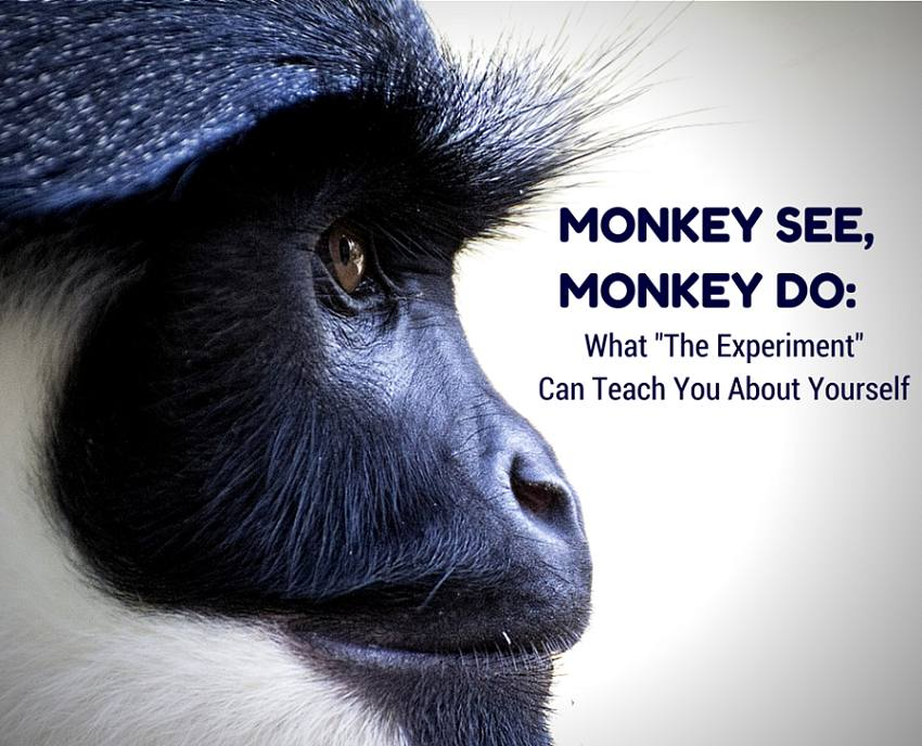 Social Experiment With 5 Monkeys