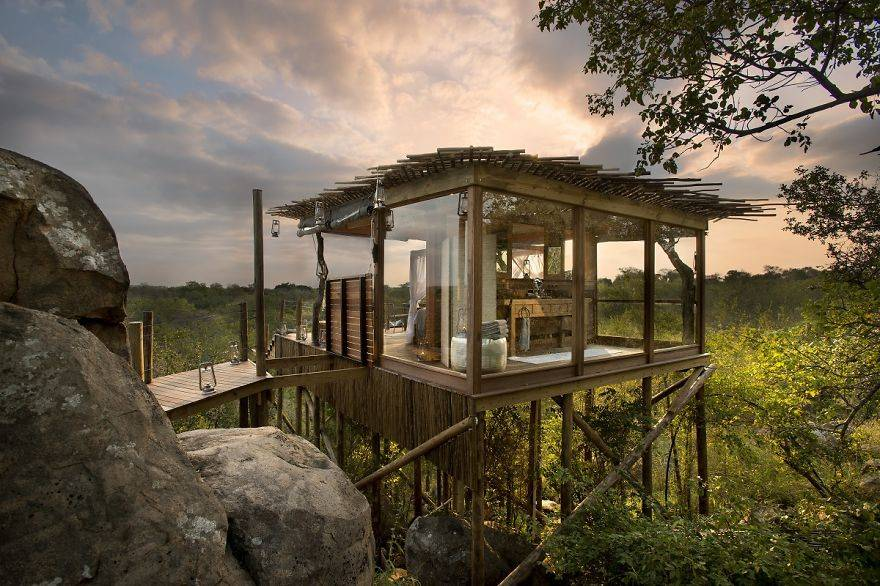 Amazing Hotels Kingston Treehouse, Lion Sands, Africa