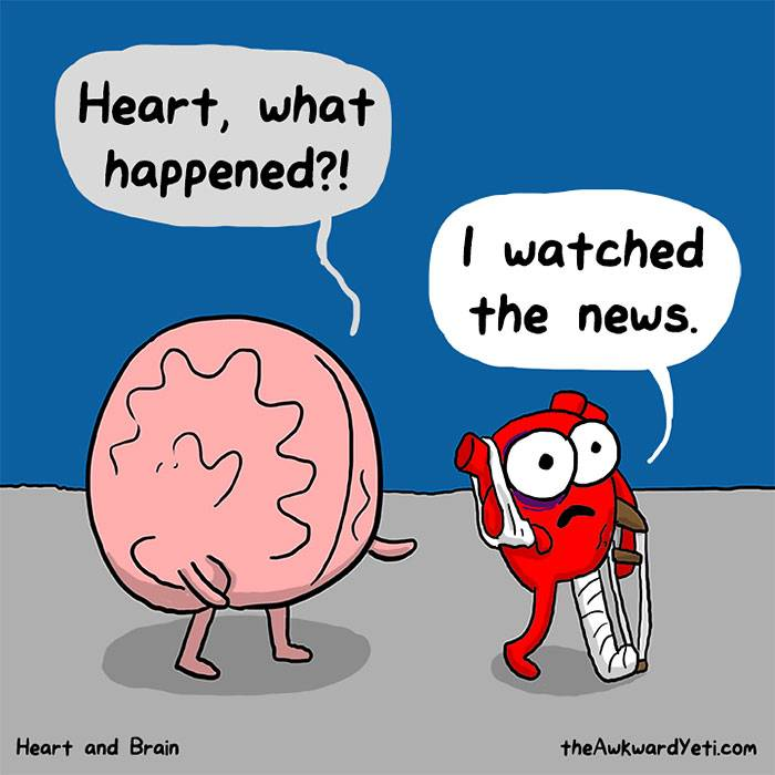 Heart and Brain 3