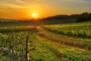 Sunsets Bergerac,France