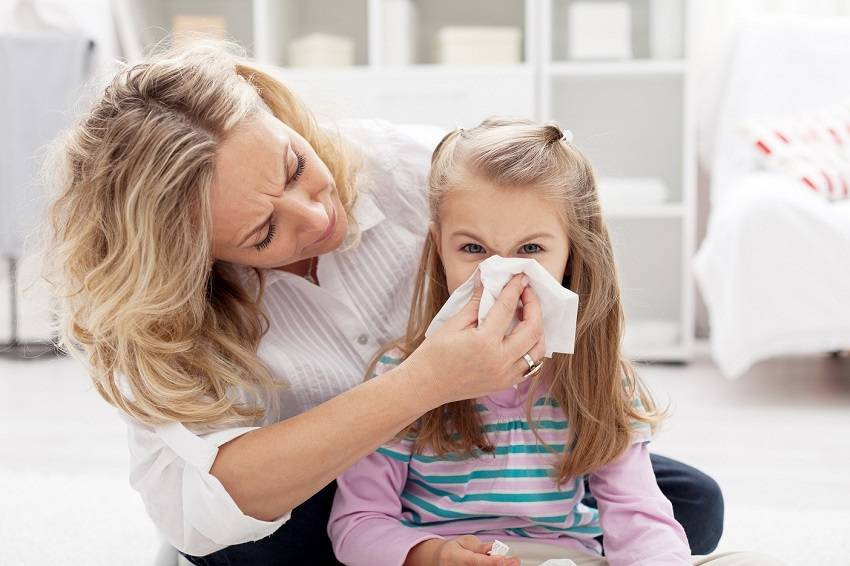 Reduce Allergens in Your Home