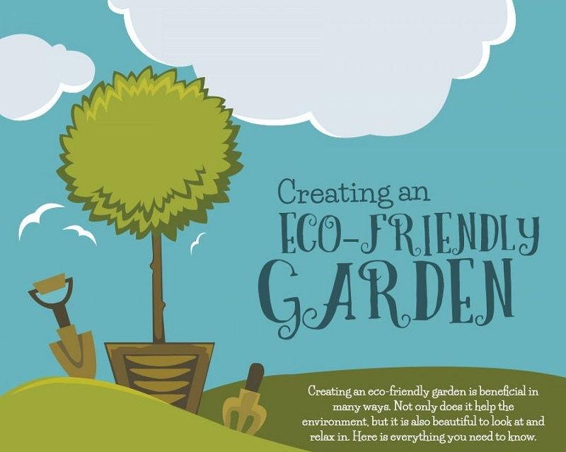 Creating an Eco-Friendly Garden