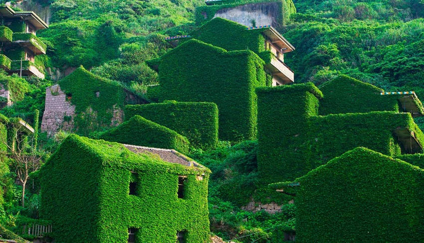 Shengshan Island Abandoned Village Being Overtaken by Nature