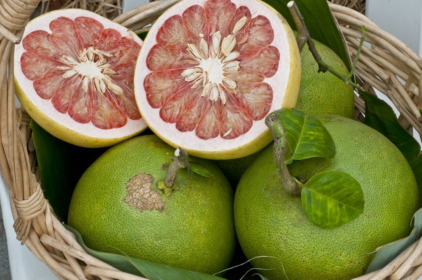 What Happens to Body When You Eat Pomelo