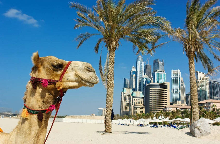 4. Dubai - United Arab Emirates