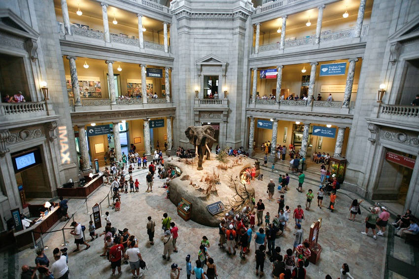 Smithsonian Institution National Museum of Natural History