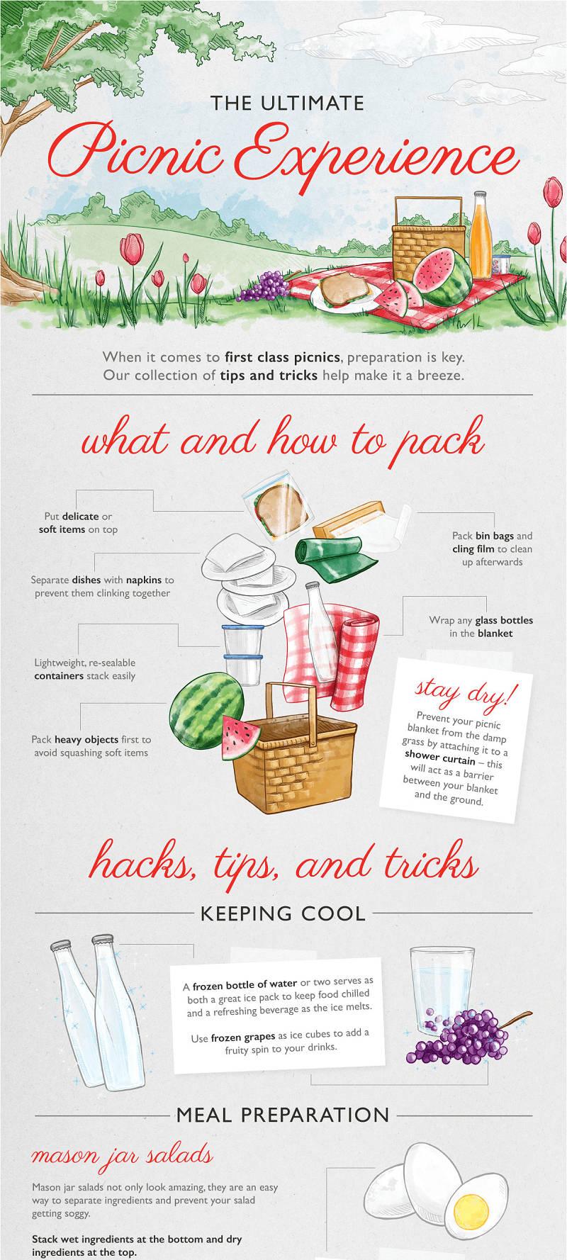 Picnics Hacks Infographic - 1