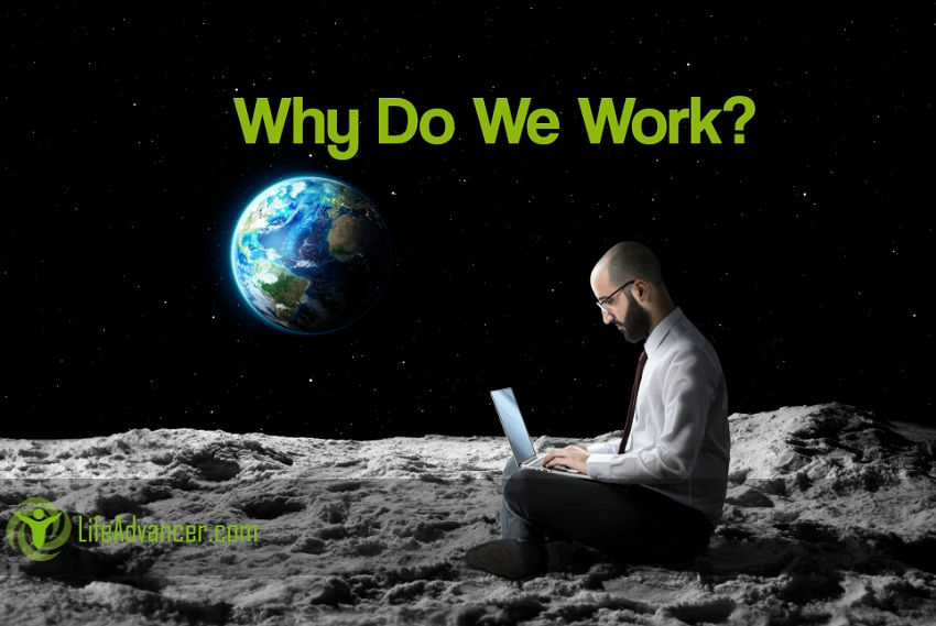 Why Do We Work? Humans Is the Only Species on the Planet That Works for a Living