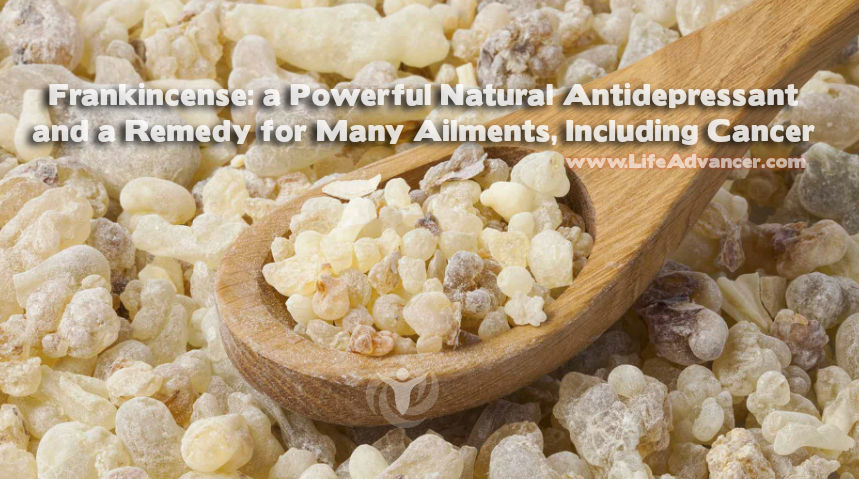 Frankincense Essential Oil Benefits Vary from Treating Depression to Curing Cancer