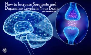 Increase Serotonin and Dopamine