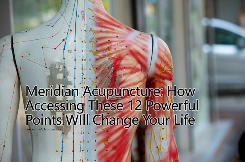 The Meridian Acupuncture