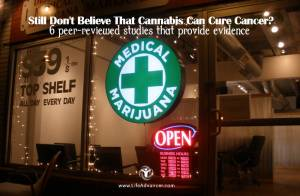 cannabis can cure cancer 1
